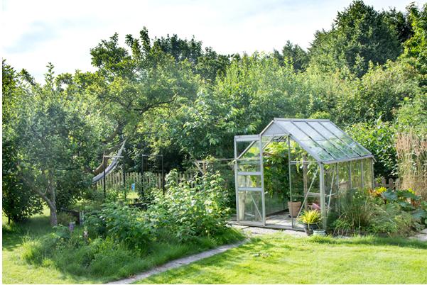 Ne laissez pas votre jardin en friche