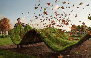 Le grand nettoyage d'automne