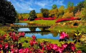Comment préparer son jardin pour le printemps ?